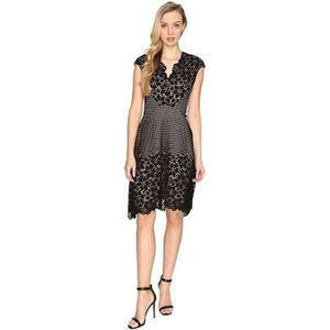 Maggy London Flower Border Lace Fit & Flare Dress